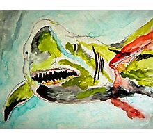 Great White Hope - Shark Attacked Photographic Print