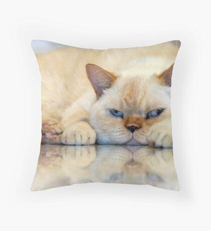 Casper Throw Pillow
