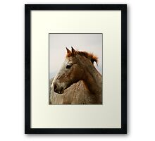 Strong spirit Framed Print