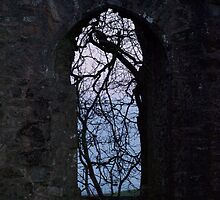 Ruins of Killeavy Church - Northern Ireland  by Susan Grissom