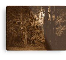 Creepy trees Metal Print