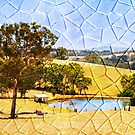 Altered View by Helen  Page
