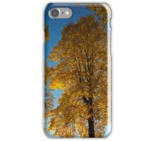 Maple Magnificent   iPhone Case/Skin