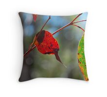 Backlit Gum Leaves, Blue Mountains of NSW Throw Pillow