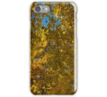 Chaos in Gold and Yellow   iPhone Case/Skin