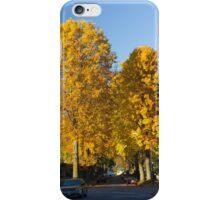Golden Maple Corridor   iPhone Case/Skin