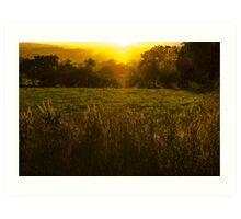 The Setting Sun - Sunset in Ireland Art Print