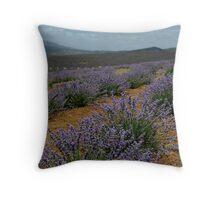photoj Tas Lavender Farm Throw Pillow