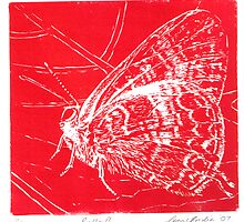 Butterfly Red Lino by Correlation