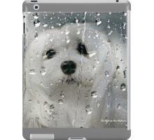 Snowdrop the Maltese - Spring Showers iPad Case/Skin