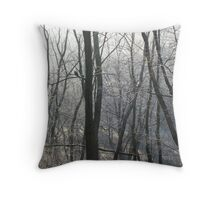 Icy morning, rural Ohio Throw Pillow