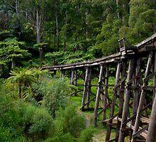 Puffing Billy Railway Bridge by Tony Lin