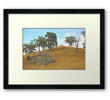 Water ....Please ! -  Only The Strong Survive - Northern NSW, Australia Framed Print