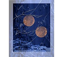 2 moon garden Photographic Print