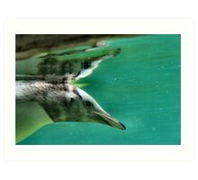 "The Penguin  (3) - Fantastic underwater photo of a penguin in ""flight"" Art Print"