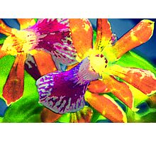 Tropical beauty Photographic Print