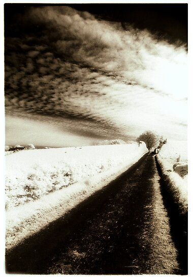 a wintry road by ragman