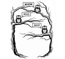 Funny Owls Saying Who/Whom - Comic Cartoon Photographic Print