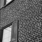 Windows by RipleyDigital