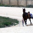 Horse racing by Christian  Zammit