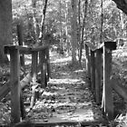 Lost Bridge In Fall by RipleyDigital