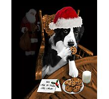 ARF> I'LL JUST SAY SANTA ATE THE COOKIES.. FUN FESTIVE CANINE SANTA PICTURE AND OR PRINT ECT. Photographic Print