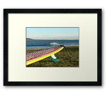 Colourful longboard Framed Print