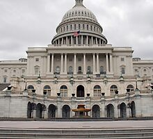 U.S. Capital Building Close-Up by Brad Staggs