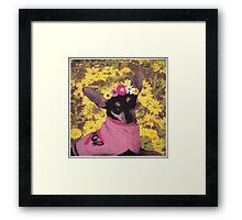 Little Doggie Framed Print