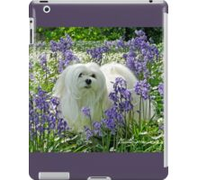 Snowdrop the Maltese -  in the Bluebell Woods iPad Case/Skin