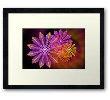Sunset Foral Framed Print