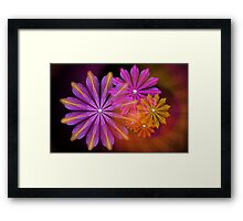 Sunset Foral Framed Print