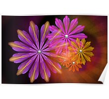 Sunset Foral Poster