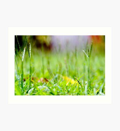 Grass Forest Art Print