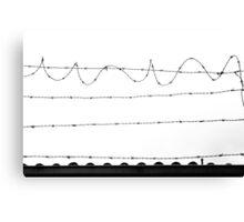 Prickly Wire Canvas Print