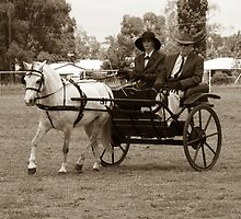 Carriage Driving2 by Barbara Anderson