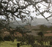 Ceredigion, Wales by joconti