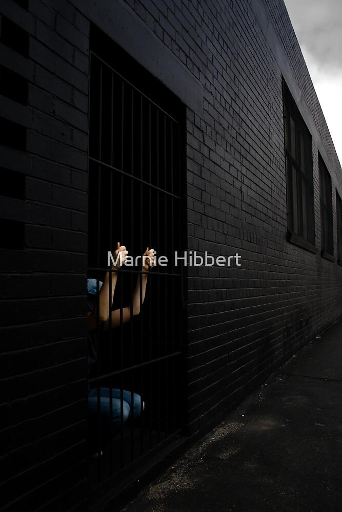 Misjudgement by Marnie Hibbert