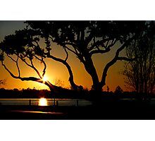 Back Bay Live Oak Sunset  Photographic Print