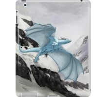 Arctic Dragon iPad Case/Skin