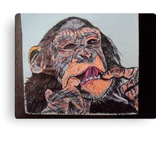Chimp! Canvas Print