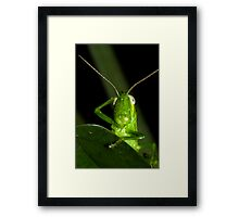 I forgot! Framed Print