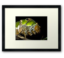 Rising to the occasion Framed Print