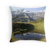 Pond with a View Throw Pillow