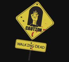 The Walking Dead by nickeybird
