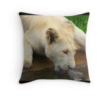 african white lion cub Throw Pillow