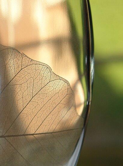 inside the bottle by dominiquelandau
