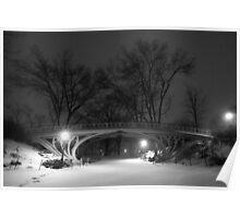 Central Park in the Snow 16 Poster