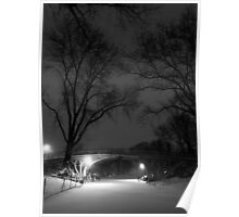 Central Park in the Snow 15 Poster