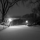 Central Park in the Snow by Brian Ach